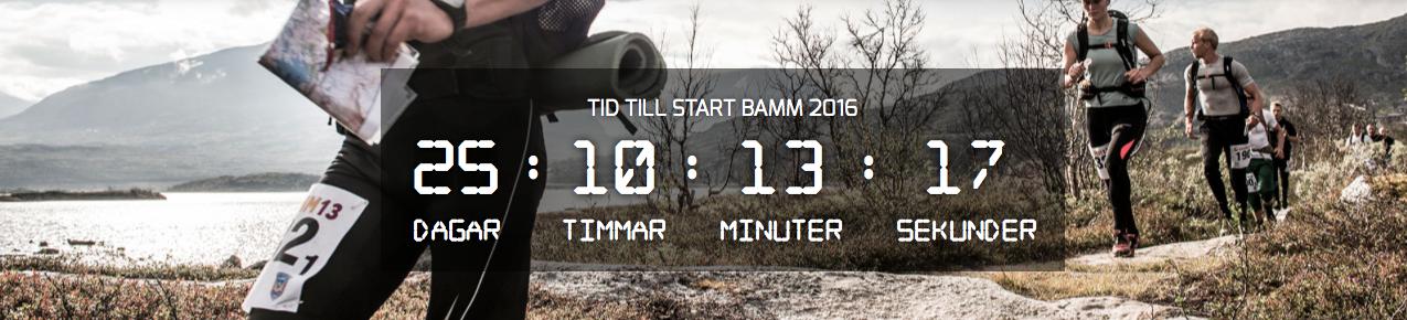 BAMM 2016-2
